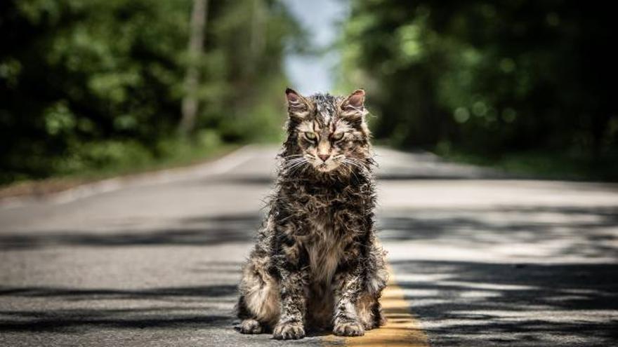El gato Church en la última adaptación de 'Cementerio de animales' (Dennis Widmyer y Kevin Kolsch, 2019)