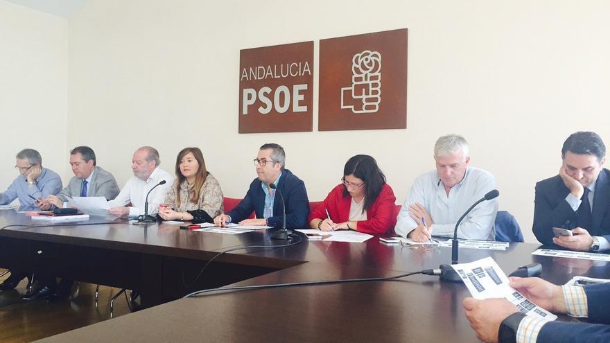 El PSOE mantiene a los miembros de su lista que lograron escaño e incluye a Argota y Juana María Carmona