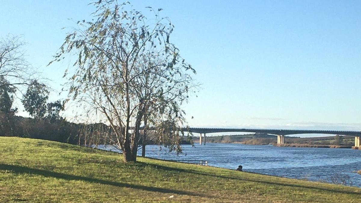 El hallazgo ha tenido lugar en la margen derecha del río Guadiana, a la altura del ferial.