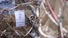 Imagen del cargamento de material sanitario que llegó a Gran Canaria el pasado 5 de abril.