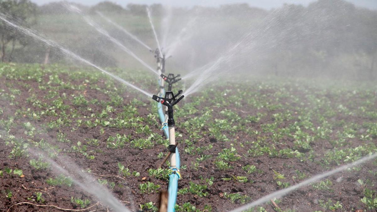 Riego en campos de cultivo | PIXABAY
