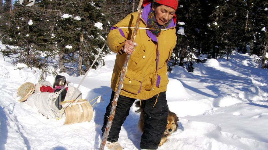 """Elizabeth """"Tshaukuesh"""" Penashue es una mujer innu de 84 años de Sheshatshiu, en Labrador. Durante muchos años, cada primavera, ha liderado un recorrido a pie por las montañas Mealy con el objetivo de que los jóvenes innus reconecten con las tierras en las que han vivido durante casi 8.000 años. No quiero ver que mis hijos lo pierden todo. No quiero que pierdan su identidad innu, su cultura y su vida. Antes de marcharme tengo que enseñar a los niños. Si nadie enseña a nuestros hijos, ¿qué pensarán cuando crezcan? ¿Pensarán 'no soy innu, soy un blanco'? Es importante saber quién eres. Yo soy innu. Esta tierra es mi vida. Estoy orgullosa de haber nacido en una tienda de campaña. Sin enfermera, sin médico. Mi padre ayudó a mi madre a dar a luz. Cuando camino por estas tierras, siento que voy a casa, a un lugar que me pertenece. El lugar innu. Elisabeth comenzó su décimo tercer y último recorrido el pasado mes de febrero de 2014. Antes de empezarlo, sin embargo, descubrió que el acceso a la tierra ancestral innu alrededor de Muskrat Falls le ha sido denegado por parte de la corporación energética Nalcor, que construye un faraónico proyecto hidroeléctrico en el área. /FOTO 6 ©Elizabeth Penashue"""
