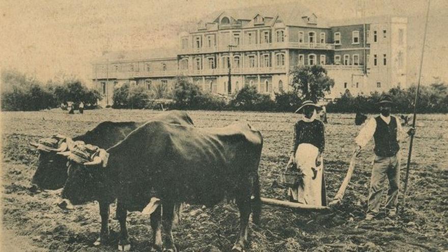 Yuntas frente al Hotel Metropol, 1900