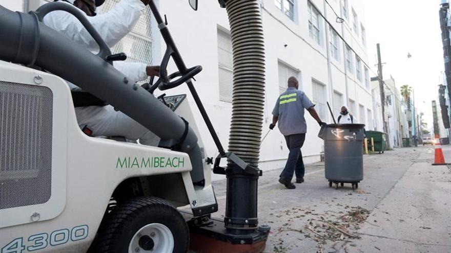 Miami considerará el uso del mosquito transgénico para combatir el zika