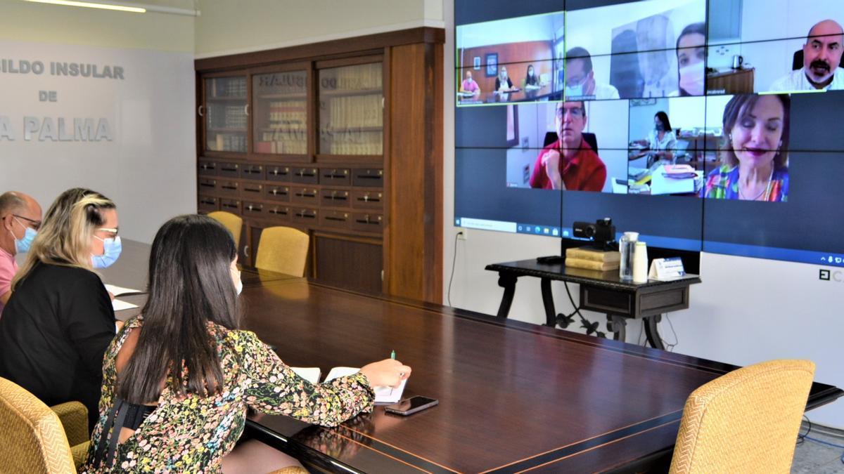 Reunión telemática de la Fecai.