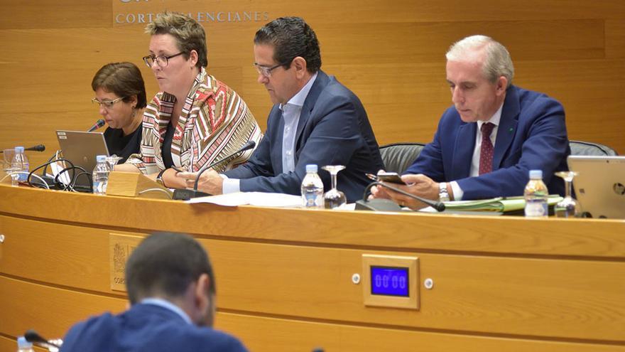 La secretaria autonómica María José Mira durante su comparecencia en comisión en las Corts