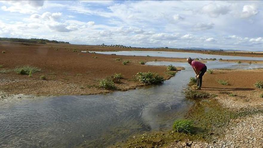 Un nuevo vertido contaminante amenaza la conservación de Las Tablas de Daimiel