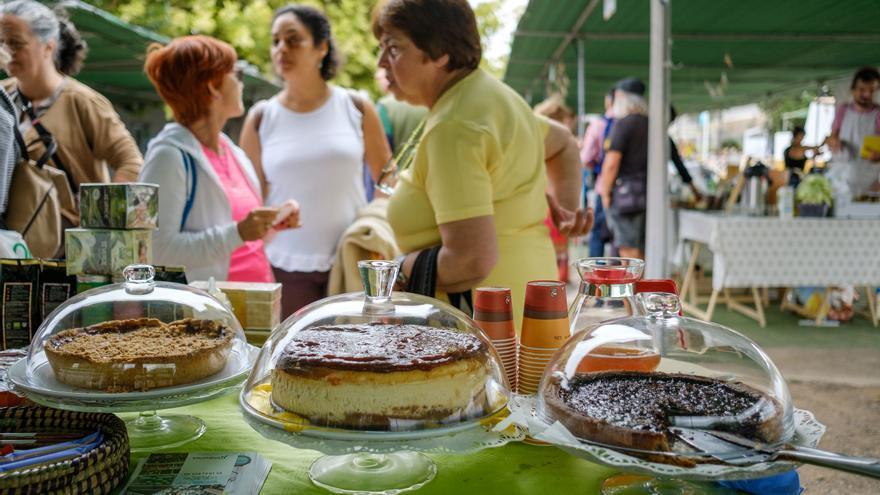 Feria Ecológica celebrada en la Granja del Cabildo de Gran Canaria.