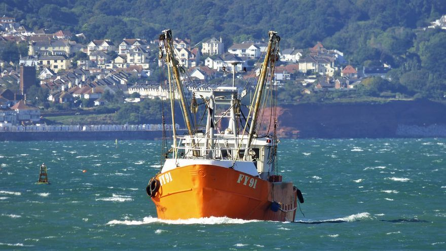 Resultado de imagen para pesca comercial