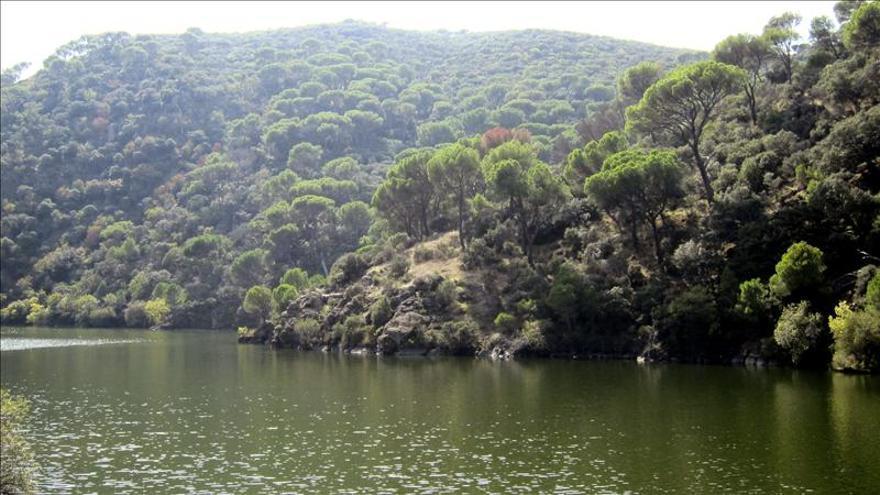 El Tribunal Supremo anula el plan gestor de Madrid para las cuencas de los ríos Alberche y Cofio