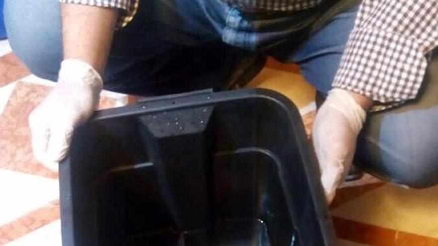 Reparada una de las cajas negras del avión de Egyptair siniestrado en mayo