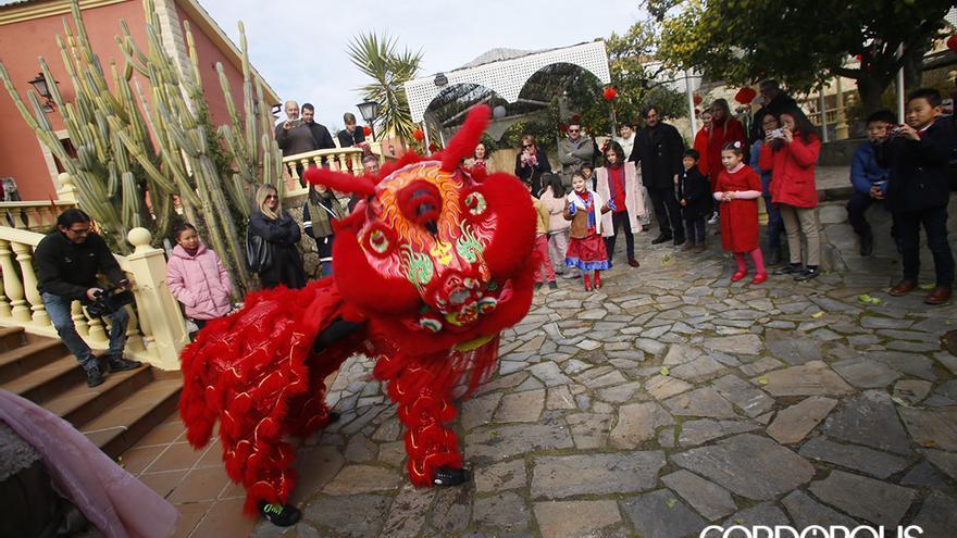Celebración del año nuevo chino en Saboriental | MADERO CUBERO