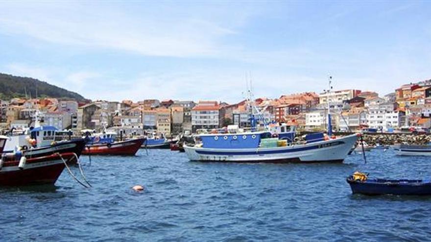 Buceo con atunes, gastronomía o marisqueo: la pesca abre la puerta al turismo