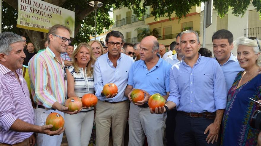 El mejor tomate de la variedad 'huevo de toro' se subasta por 2.100 euros