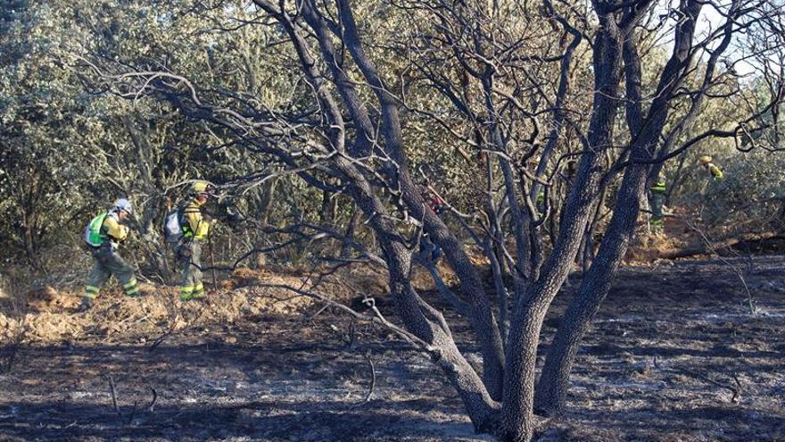 Un incendio forestal se aproxima al pueblo zamorano de Cunquilla de Vidriales
