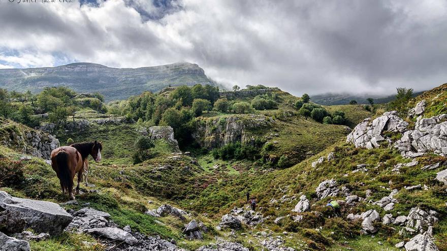 Naturea ofrece rutas de interpretación y observación del entorno natural.   JAVIER MAZA PÉREZ