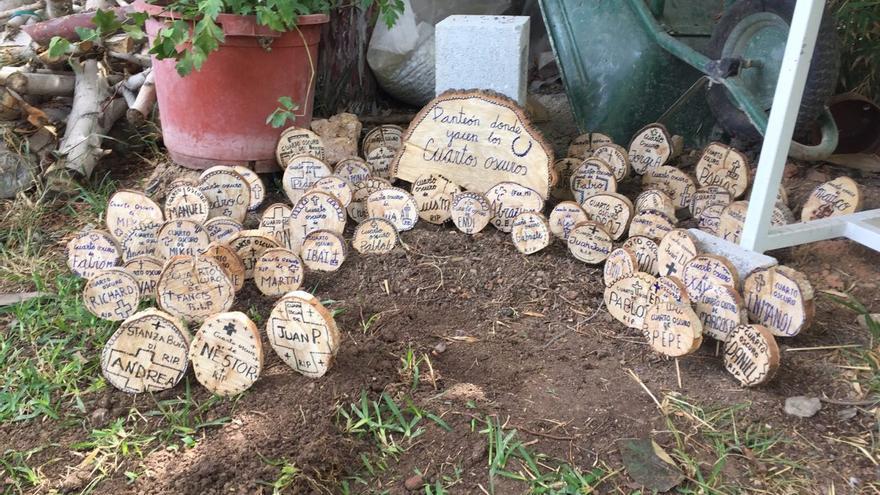 """""""Panteón"""" donde se depositan tocones de madera con el nombre de las personas que han """"superado"""" los cursos de Verdad y Libertad."""