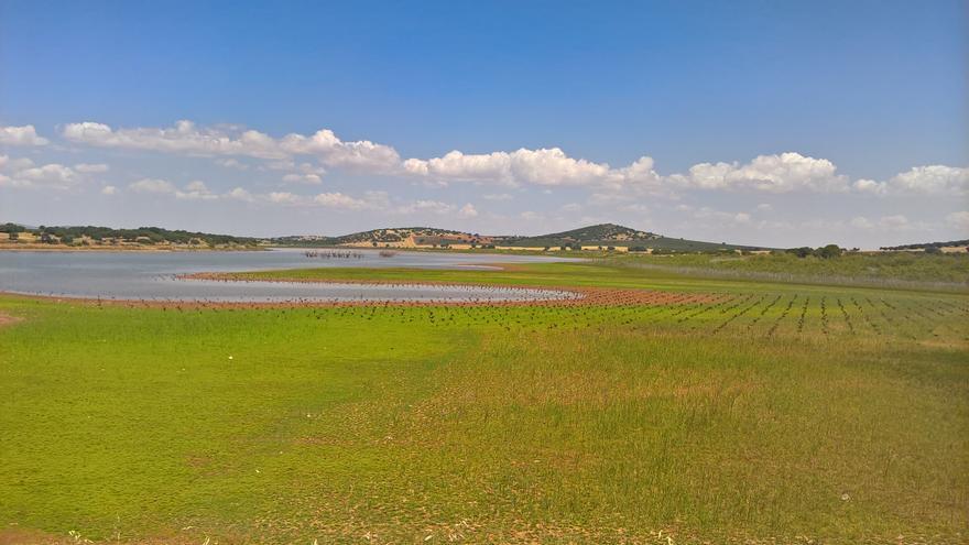 Zona afectada por el proyecto de minería de tierras raras