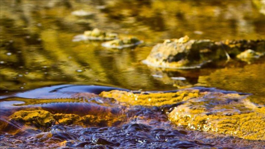 Lo ecológico, al servicio de la descontaminación minera de los ríos