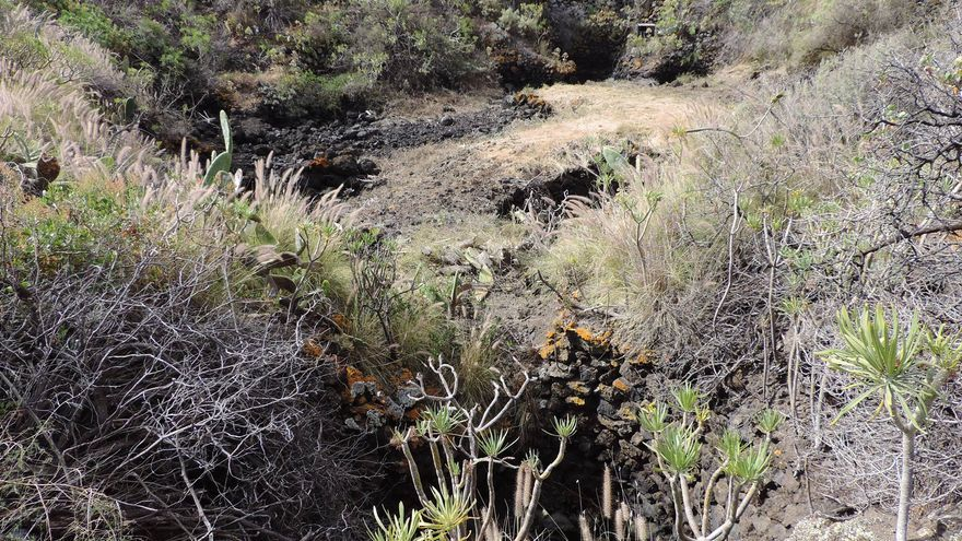 En la imagen, algunos de los pozos de chochos que han quedado al descubierto. Foto: JORGE PAIS.