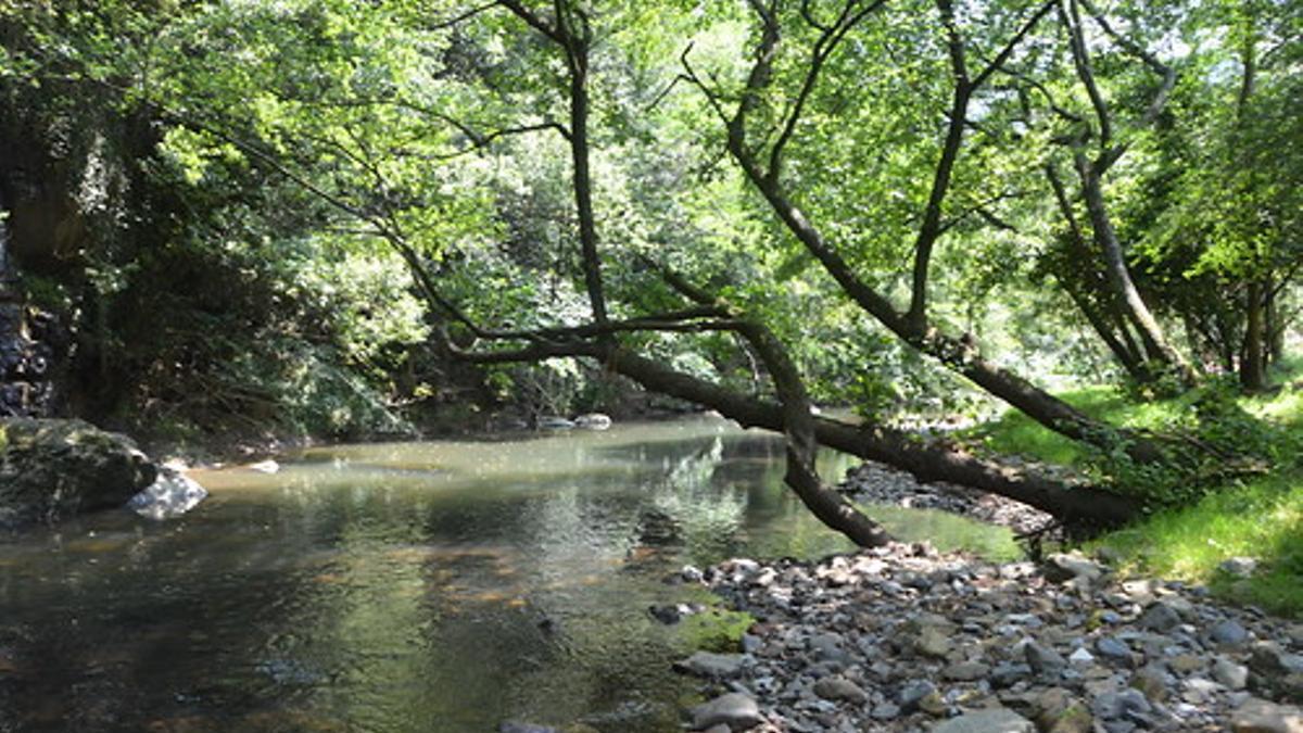 Río Barbadún, en Bizkaia