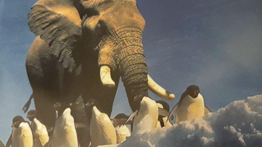 Portada del libro divulgativo 'Especies exóticas invasoras' publicado por la Universidad de Alcalá