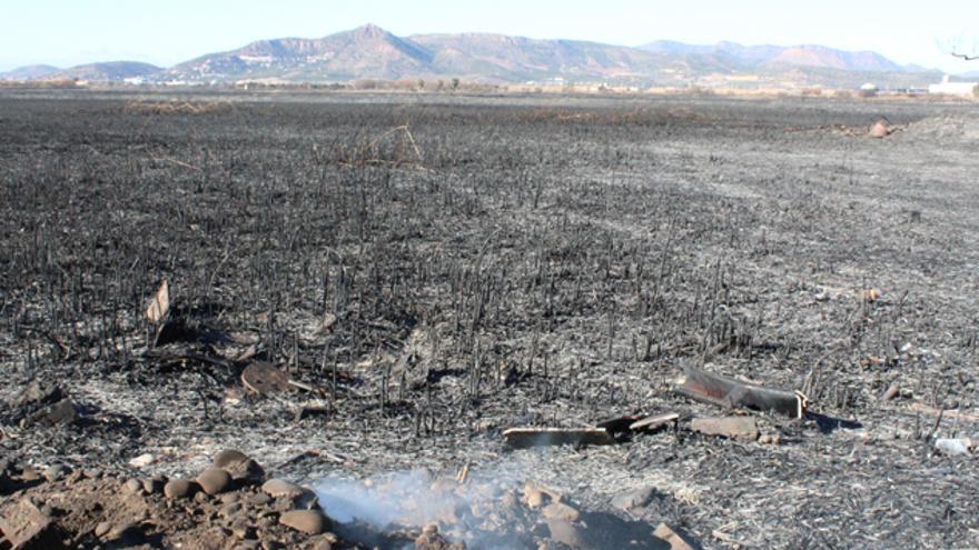 El incendio ha calcinado más de 100 hectáreas del humedal
