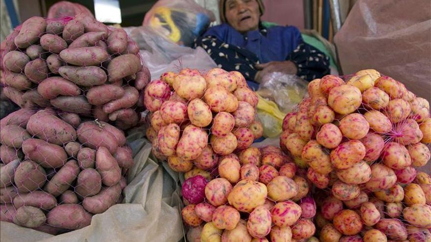 FAO: El comercio mundial de alimentos crecerá pese a posibles perturbaciones