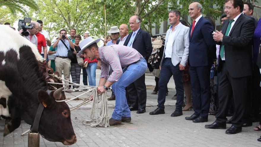 Inauguración Feria Zafra Vara Contreras