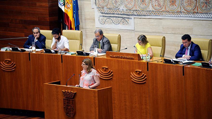 María Victoria Dominguez, en la Asamblea de Extremadura