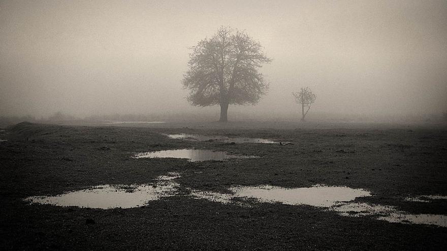"""La Sala Ondare acoge a partir de este miércoles una nueva edición de la muestra """"Fotógrafos de la Naturaleza 2016"""""""