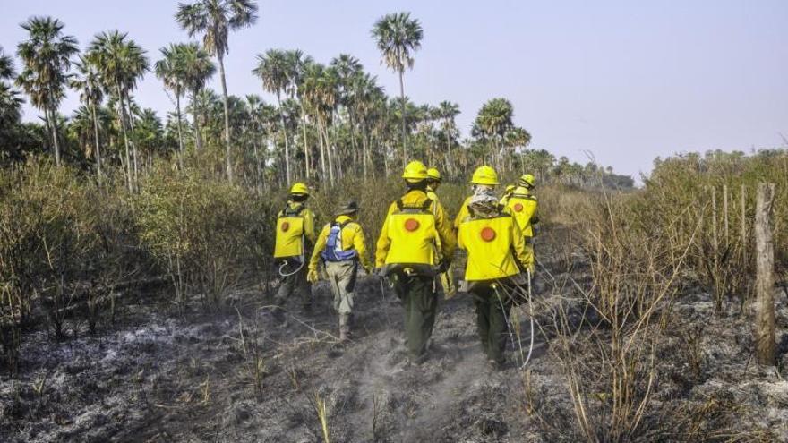 Un satélite detecta 418 focos de peligro de incendio por hogueras en Paraguay