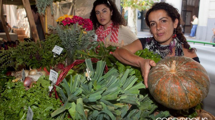 Puesto de verduras ecológicas   MADERO CUBERO