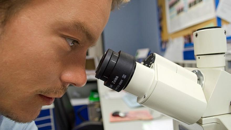 No todos los investigadores universitarios patentan los resultados de sus investigaciones (Foto: Pixabay)