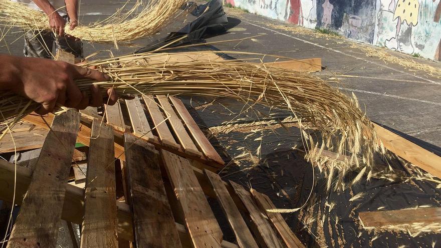 En la imagen,  colmo (paja del centeno) que se emplea en oficios artesanos ligados tradicionalmente en La Palma al uso de este material, principalmente la cestería.