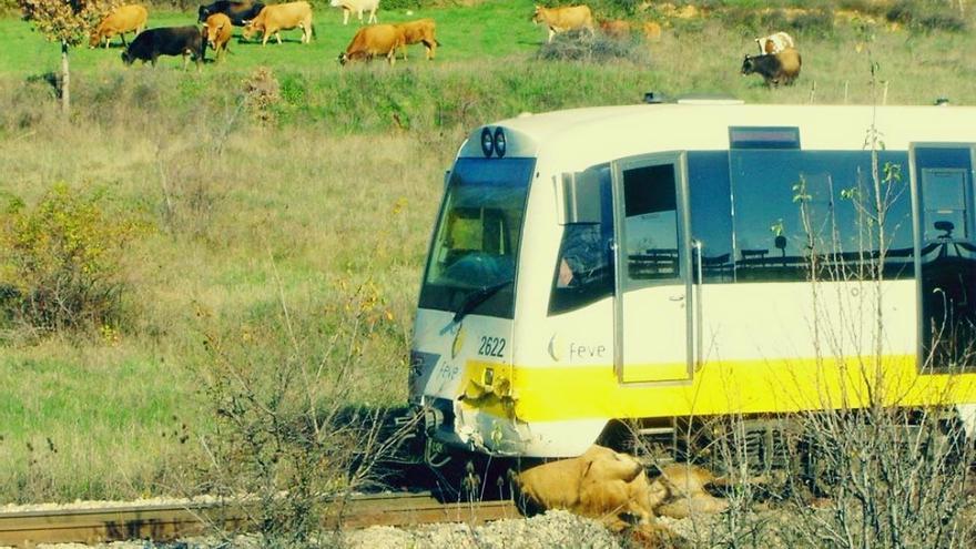 El convoy de FEVE tras atropellar a la vaca.