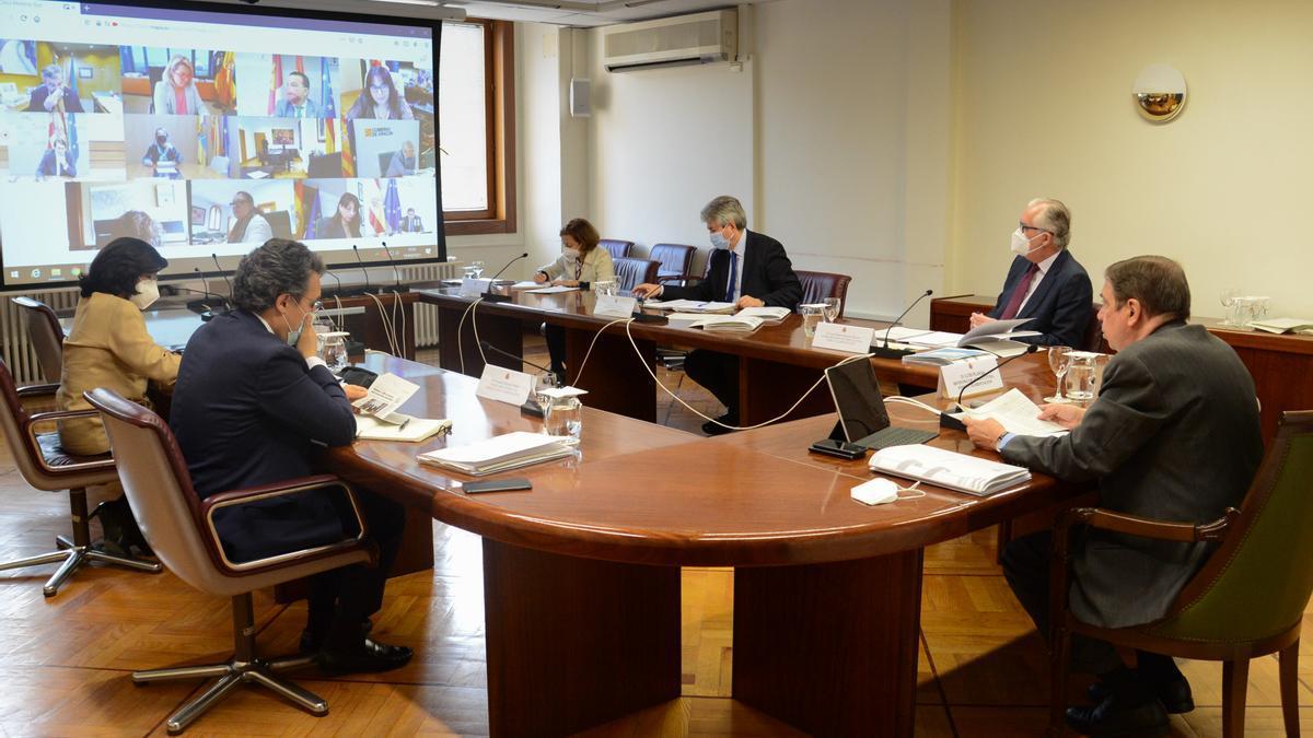 El Consejo Consultivo se ha celebrado por videoconferencia