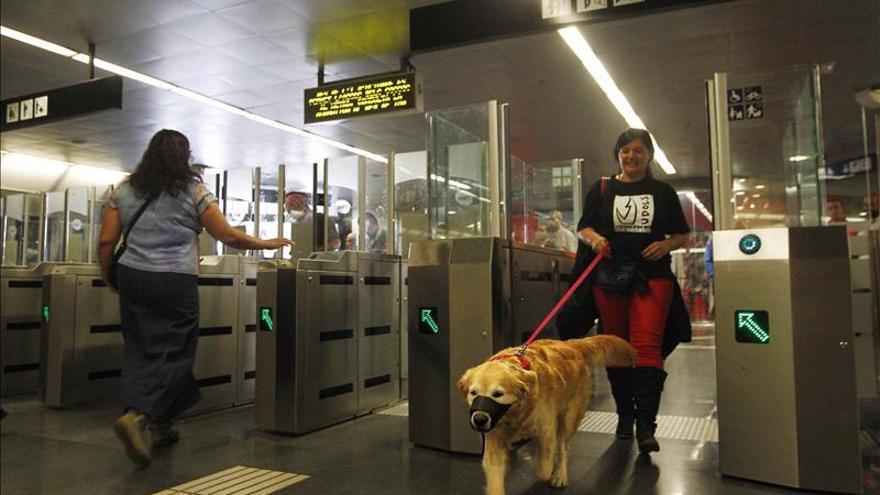 Piden a Metro de Madrid que permita la entrada de perros como en Barcelona