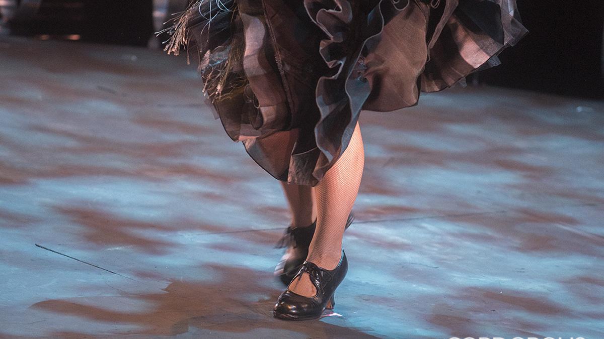 Detalle de un espectáculo flamenco
