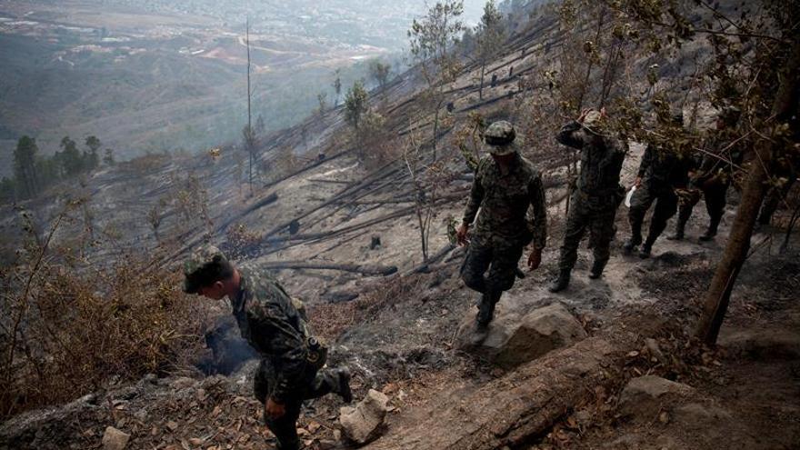 En 2019, en Honduras fueron destruidas un total de 71.850 hectáreas de bosques y pasto en 1.162 incendios, de acuerdo a cifras del Instituto de Conservación Forestal.