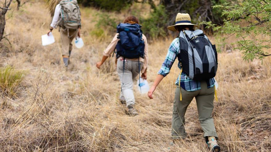 Voluntarios de 'No more Deaths' recorren el desierto de Arizona.
