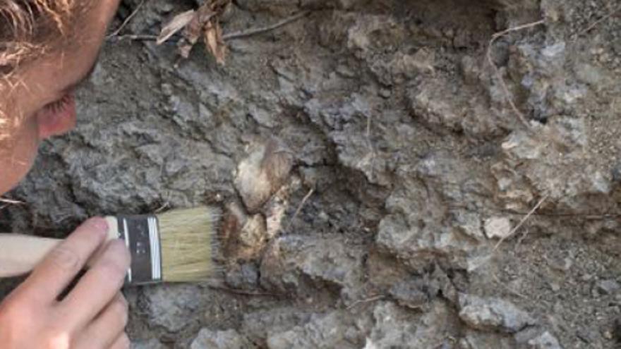 Excavaciones en Beteta (Cuenca)