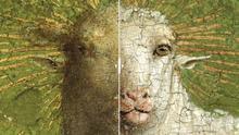 """Destapan el verdadero """"cordero místico"""" pintado por los hermanos Van Eyck... y está 'de morros'"""