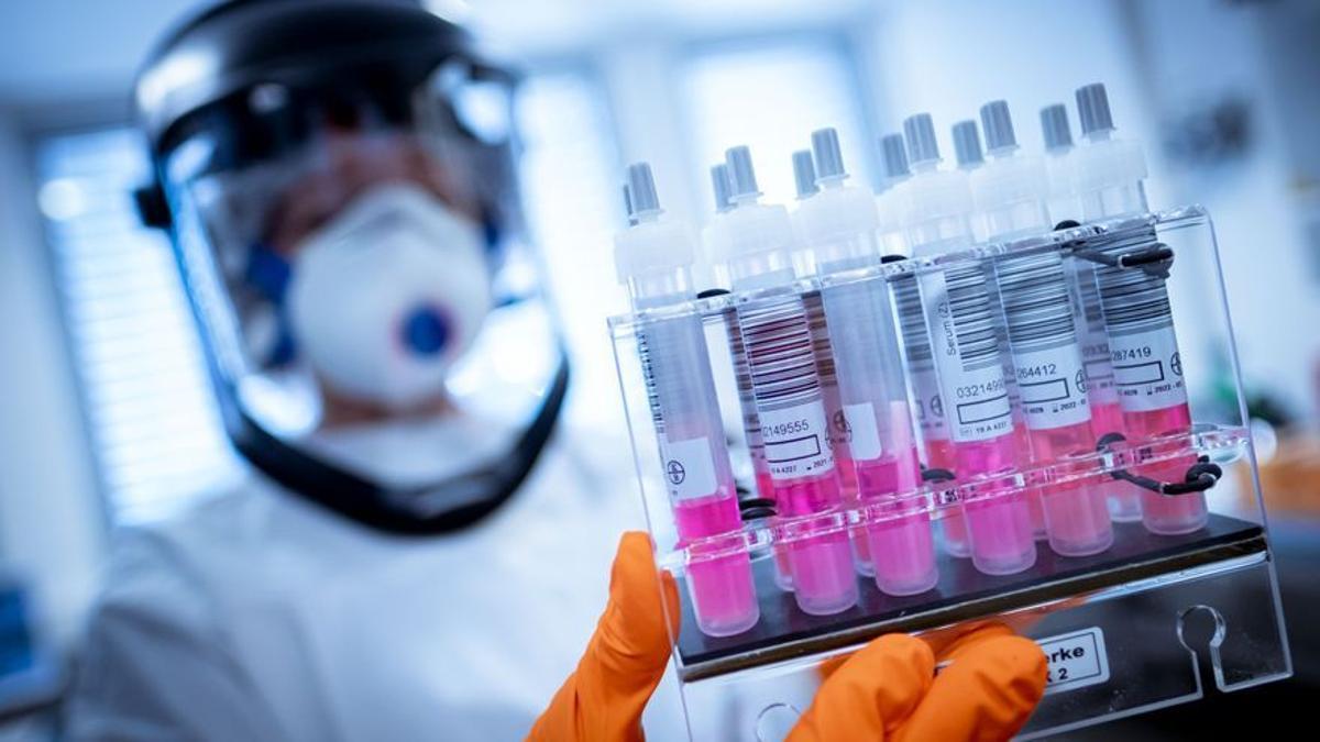 Muestras de coronavirus en un laboratorio