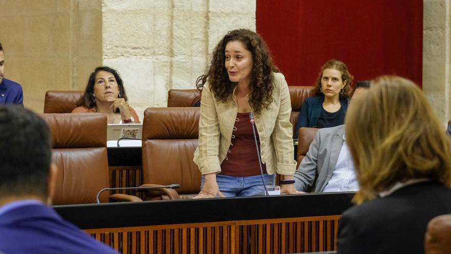 La portavoz adjunta de Adelante Andalucía y dirigente de IU, Inmaculada Nieto, en su intervención en el Parlamento.