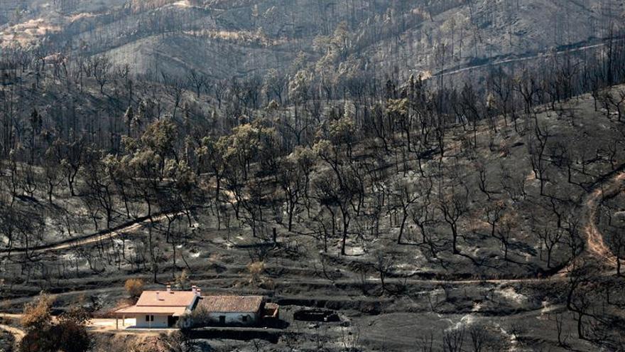 El presidente de Portugal visita la zona afectada por el incendio del Algarve