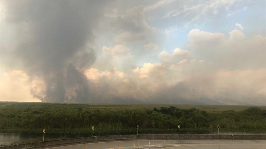 Un incendio forestal consume 32.000 hectáreas de arbustos en los Everglades