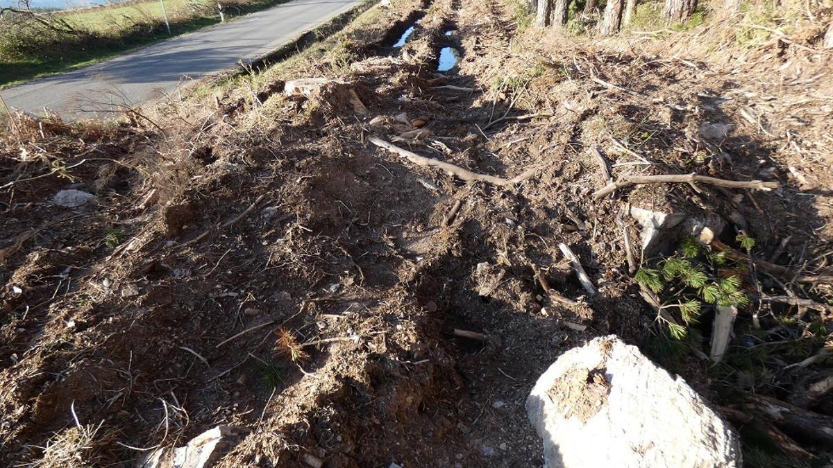 Un dolmen arrasado en Baleira (Lugo).