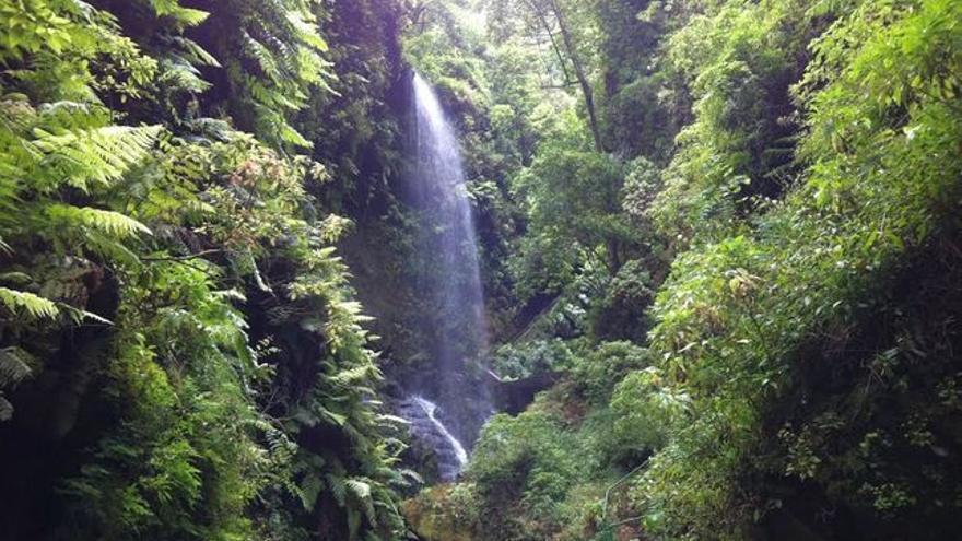 Imagen de la cascada de Los Tilos.