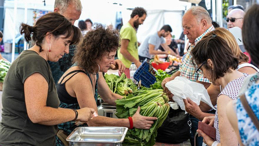 La Muestra Agroecológica contaba con la participación de 36 productores de toda la comunidad.